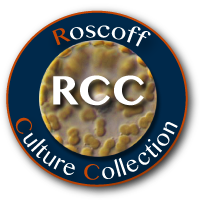 Roscoff Culture Collection